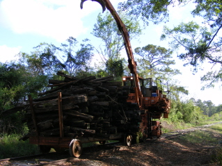 12-9 Bundle loader cleaning right of way of trees and old ties.